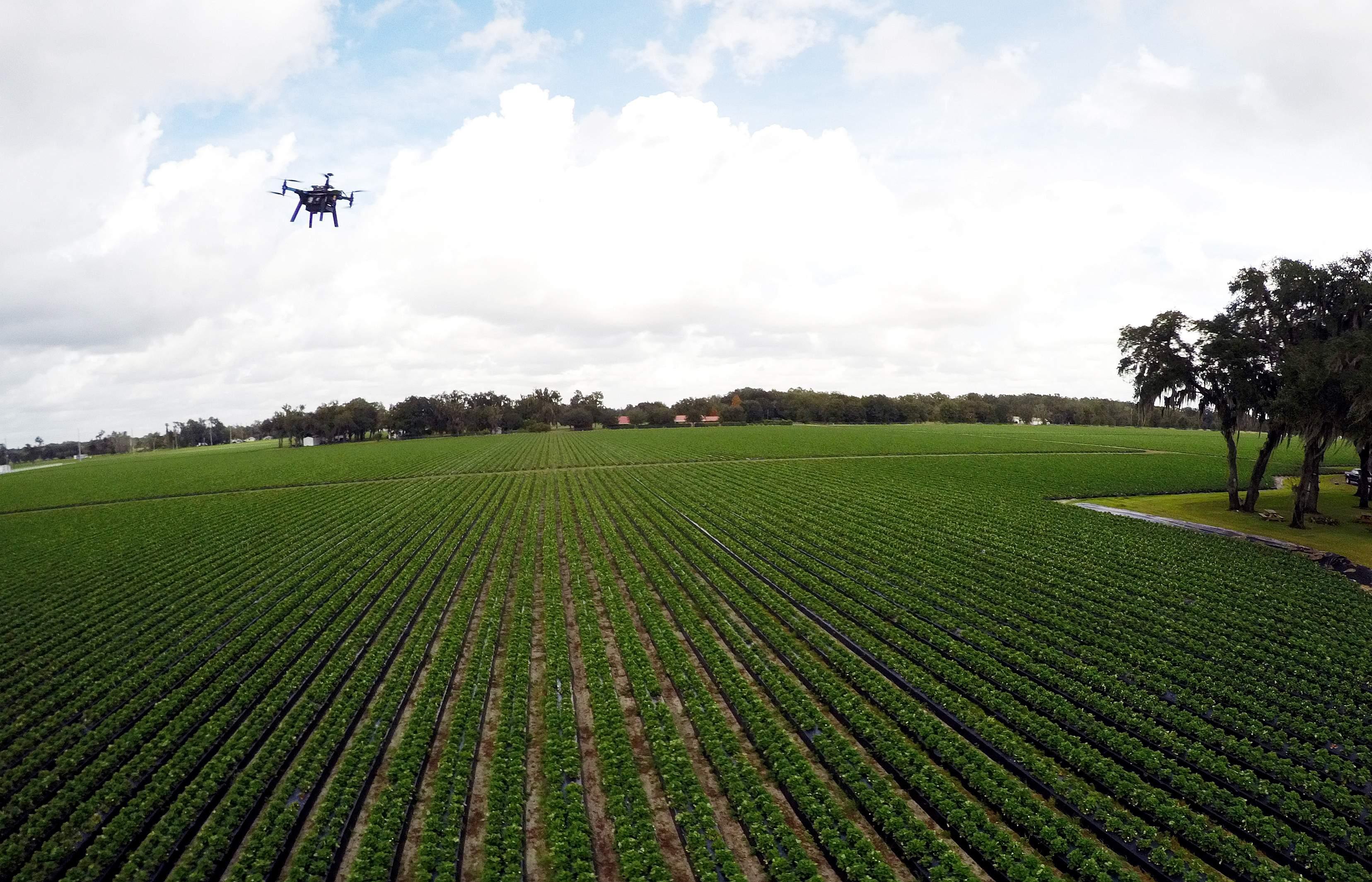 AR-151229611 Мониторинг дронами